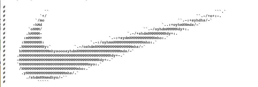 代码注释也可以玩出花来-贾旭博客